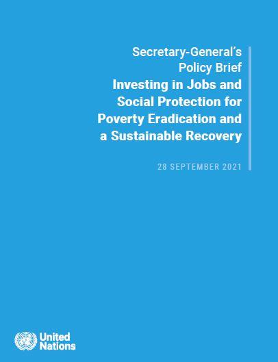 Informe de Políticas del SG: Empleo y protección social
