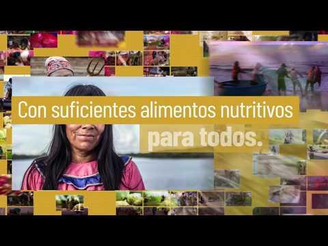 Día Mundial de la Alimentación 2018 – Nuestras acciones son nuestro futuro.